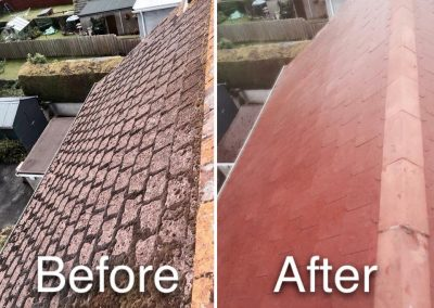 roof-cleaning-gallery-new-2